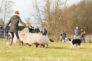 Beginners Trial Zwolle-16