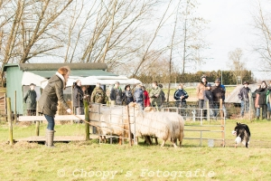 Beginners Trial Zwolle-25