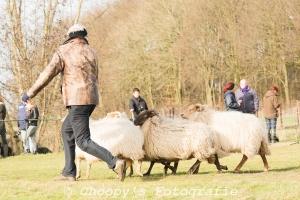 Beginners Trial Zwolle-27