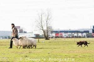 Beginners Trial Zwolle-28