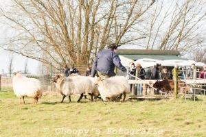 Beginners Trial Zwolle-32
