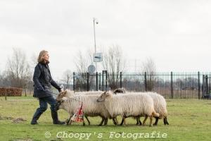 Beginners Trial Zwolle-61