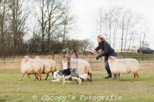 Beginners Trial Zwolle-65