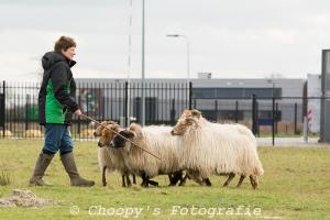 Beginners Trial Zwolle-72