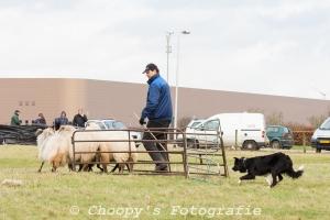 Beginners Trial Zwolle-87